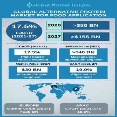 alternative protein market for food application
