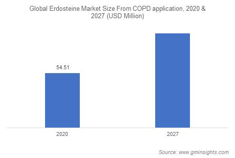 Erdosteine Market by Application