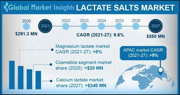 Lactate Salts Market Outlook
