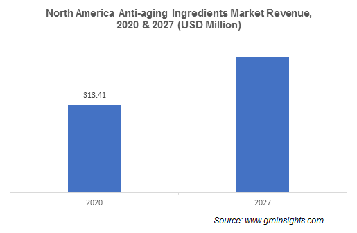 Anti-Aging Ingredients Market by Region