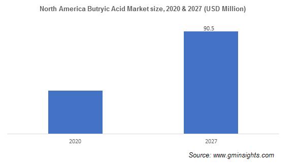 Butyric Acid Market by Region