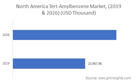 Tert-Amylbenzene Market by Region