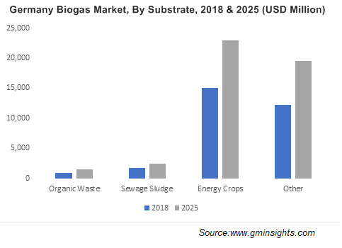 Germany Biogas Market By Substrate