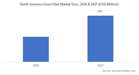 North America Gum Fiber Market