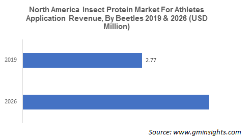 North America Insect Protein Market For Athletes Application Revenue By Beetles