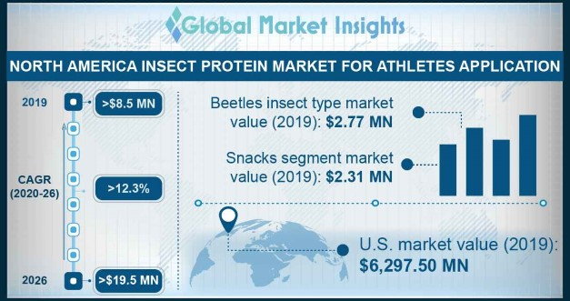 North America Insect Protein Market for Athletes Application