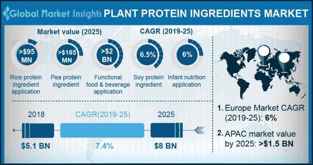 Plant Protein Ingredients Market
