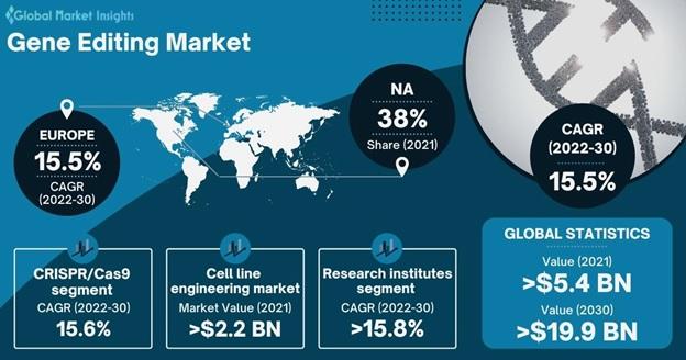 Gene Editing Market Overview