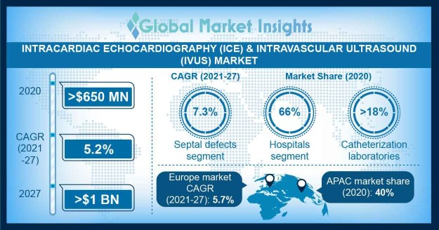 Intracardiac Echocardiography (ICE) and Intravascular Ultrasound (IVUS) Market Overview