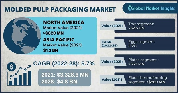 Molded Pulp Packaging Market Outlook