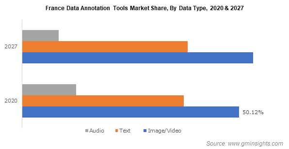 France Data Annotation Tools Market Share, By Data Type